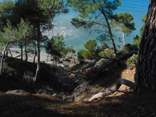 Schlucht auf Mallorca © Astrologin Bärbel Zöller