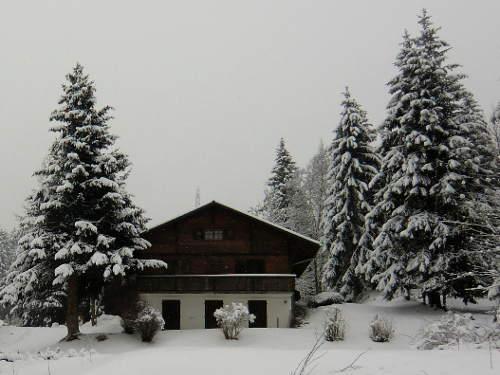 Bauernhaus mit Tannen im Schnee © Astrologin Bärbel Zöller